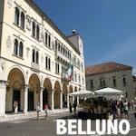 INVESTIGATORE PRIVATO BELLUNO
